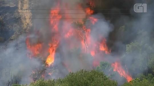 Dois grandes incêndios continuam castigando a região central de Portugal