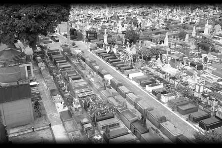 Crônica de uma Cidade Partida - foto