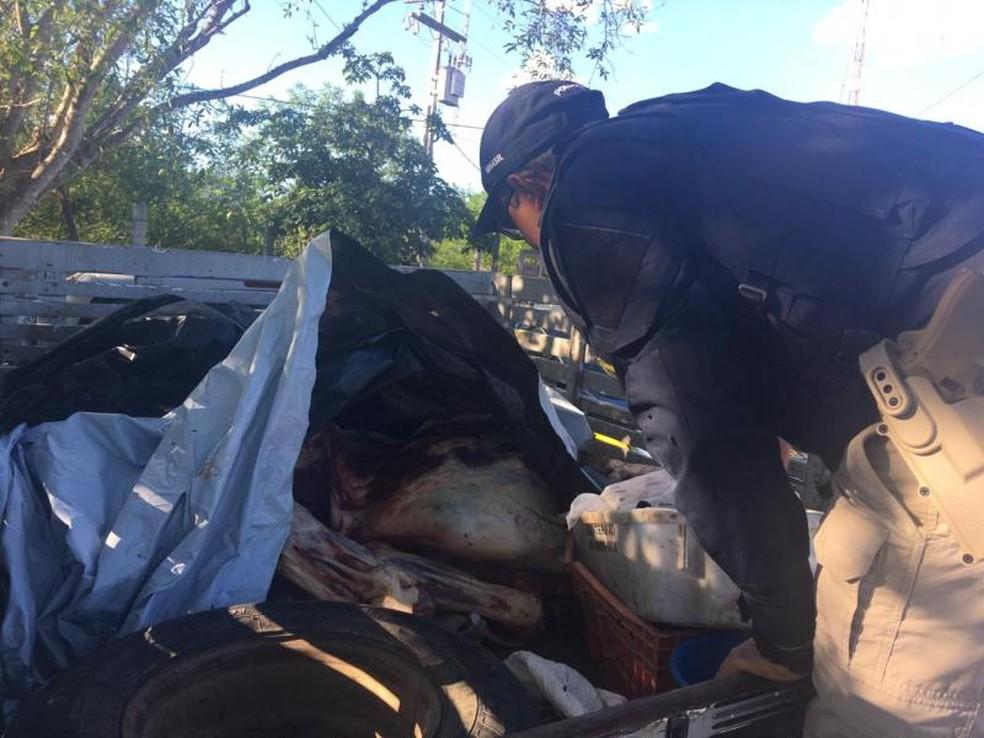 Quase meia tonelada de carne bovina irregular é apreendida em caminhonete no norte da Bahia — Foto: Polícia Rodoviária Federal/Divulgação