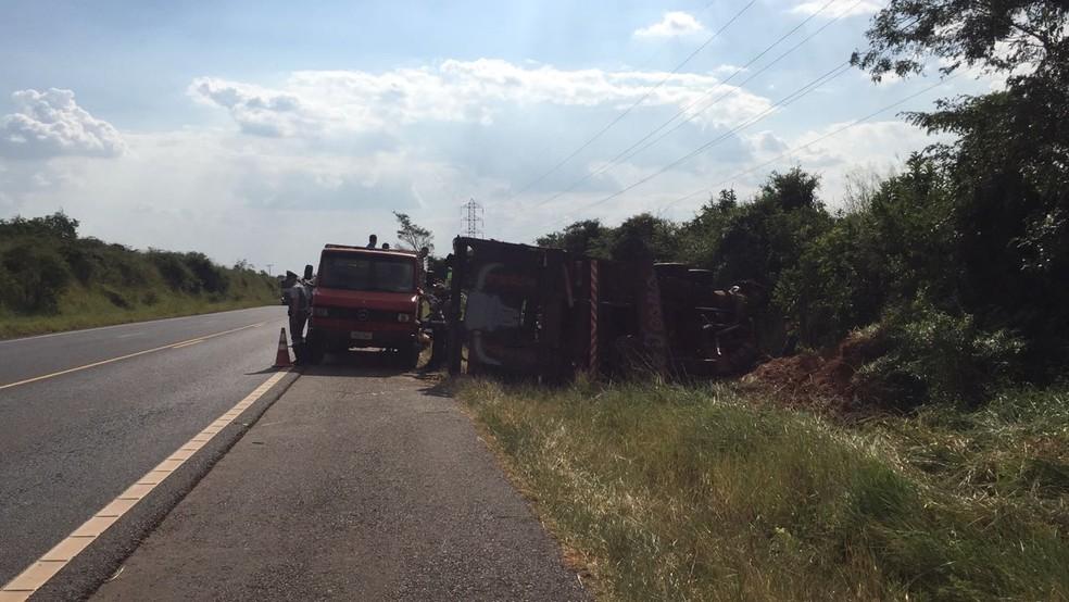 Caminhão carregado com bois tombou em Martinópolis (Foto: Paula Sieplin/TV Fronteira)