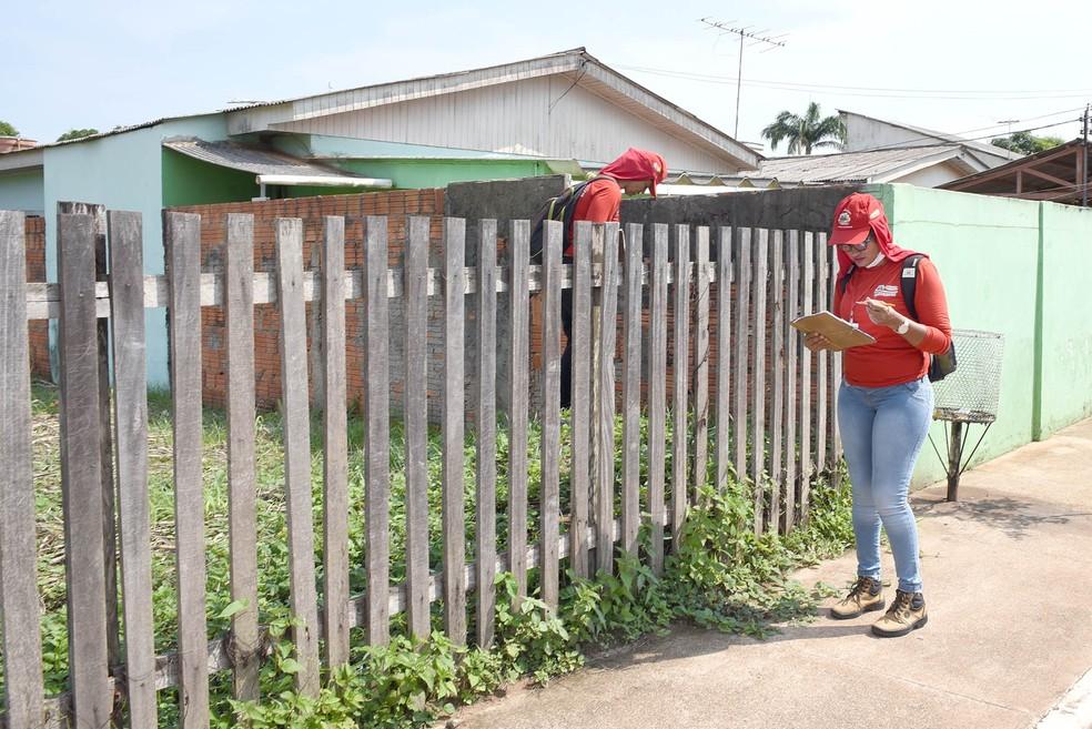 Quintais, terrenos baldios e casas abandonadas concentram 90% dos focos do mosquito, segundo Saúde — Foto: Assis Lima/Ascom Prefeitura