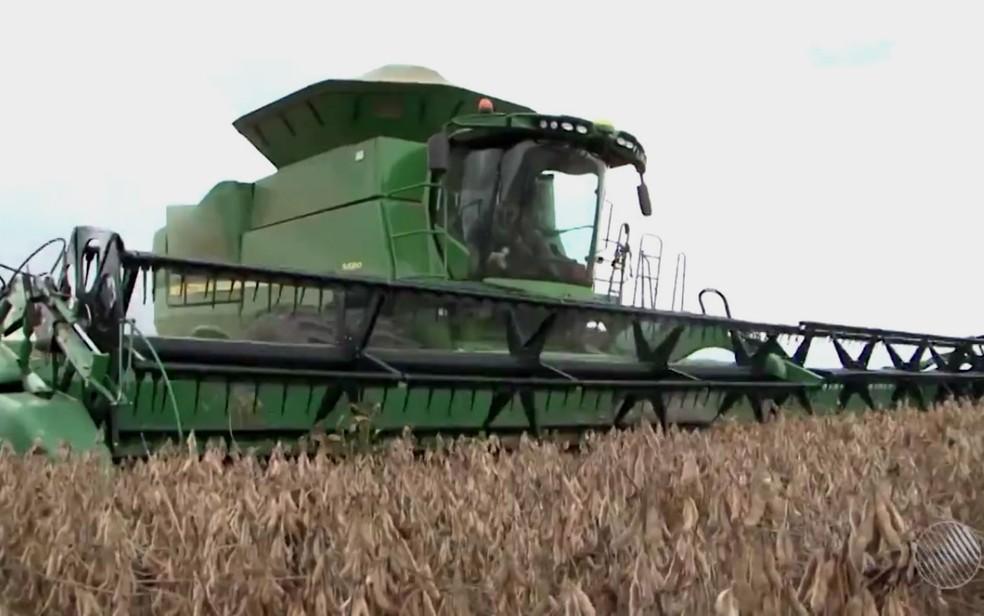 Seis milhões de toneladas de soja são colhidas no oeste da Bahia este ano (Foto: Reprodução/TV Oeste)