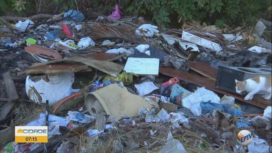 Descarte de lixo e falta de limpeza em terreno geram queixas em São Carlos, SP