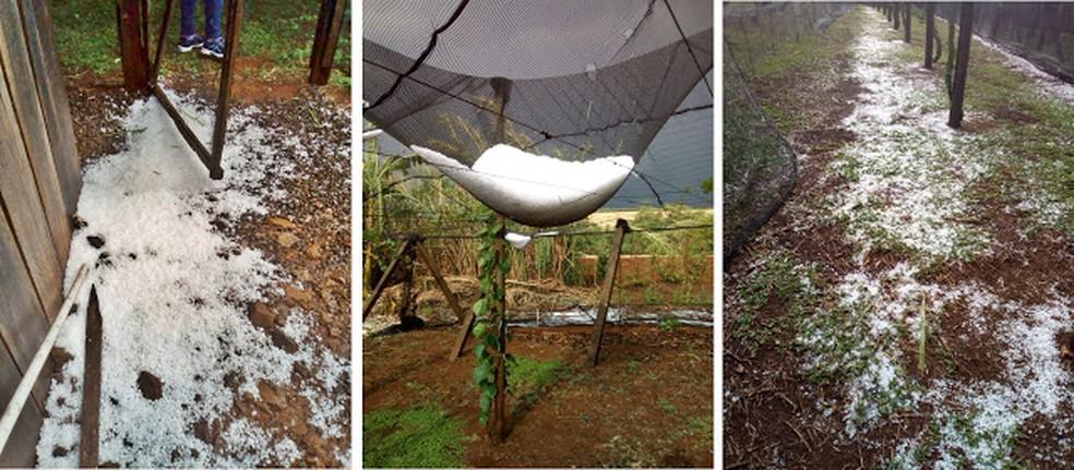 Temporal em Jardim Alegre veio acompanhado de ventos fortes e granizo (Foto: Person Ricardo dos Santos/Arquivo Pessoal)