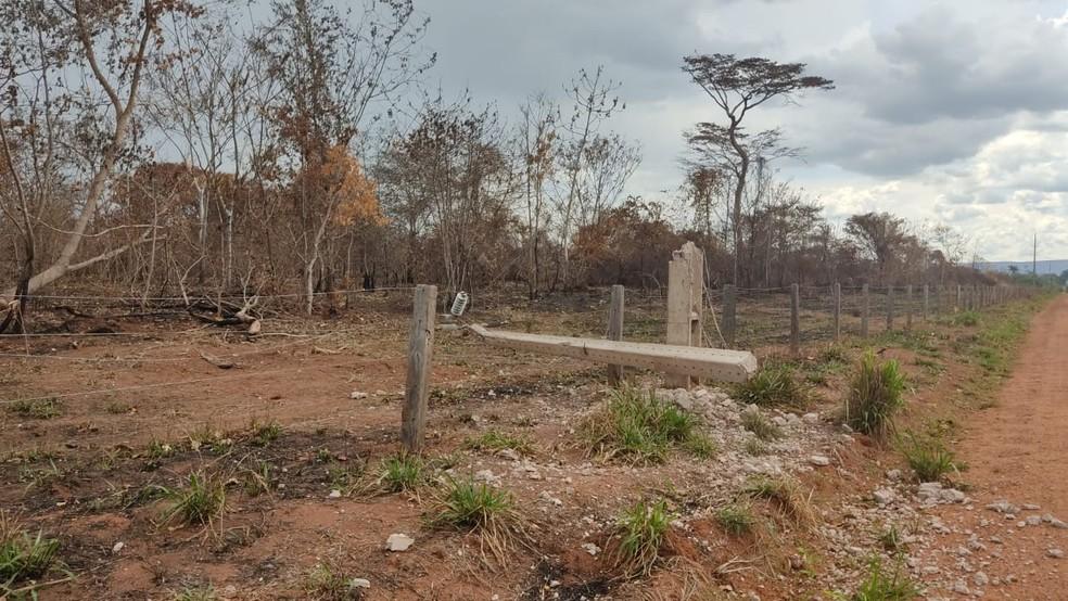 Moradores ligaram para a polícia dizendo que a aeronave havia batido contra um poste — Foto: Polícia Civil de Mato Grosso