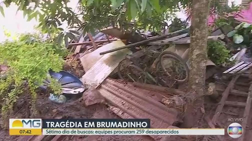 Sítio destruído pelos rejeitos na zona rural de Brumadinho — Foto: Reprodução