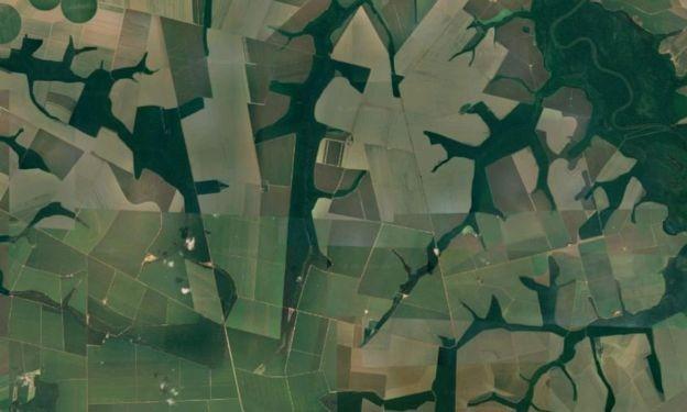 Vista aérea de fazendas no município de Sorriso (MT), líder no ranking nacional de produção agropecuária e de mortes em silos (Foto: Google via BBC News Brasil)
