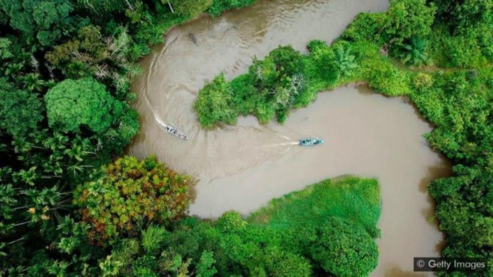 Preservar grandes extensões de terra pode ajudar a estabilizar ecossistemas vitais, como florestas tropicais, que atuam como reservatórios de carbono — Foto: Getty Images via BBC