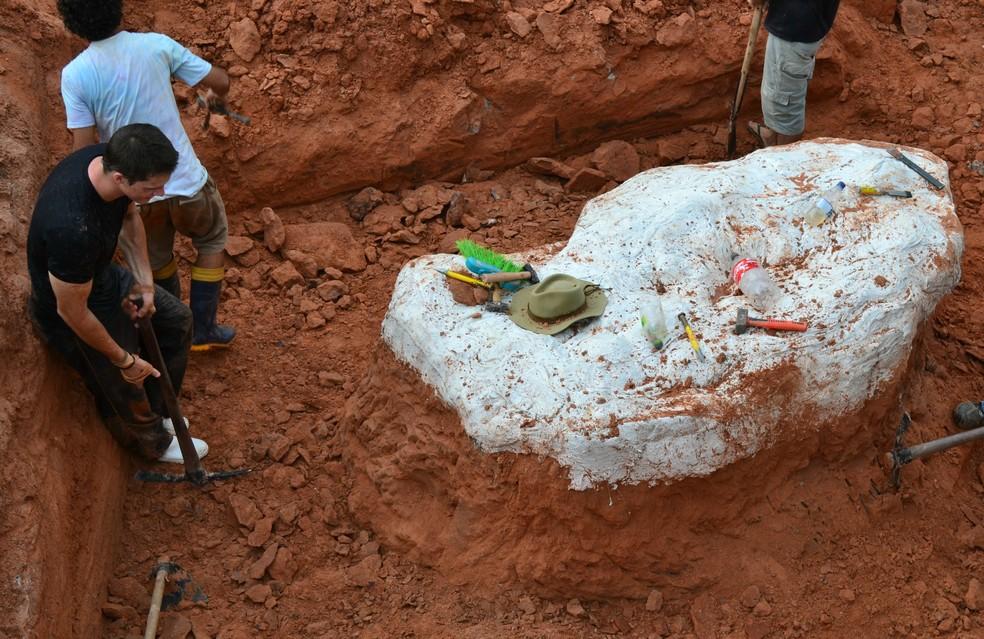 Fósseis foram escavados de rochas triássicas, com 225 milhões de anos. — Foto: CAPPAUFSM/Divulgação
