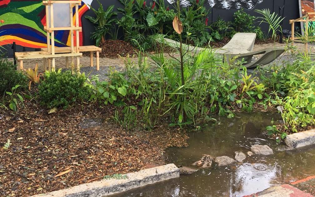 Jardim de chuva 'funcionando', alagado, em frente à Casa Cor, no bairro do Morumbi, Zona Sul de São Paulo (Foto: Divulgação/Zoom Urbanismo, Arquitetura e Design)