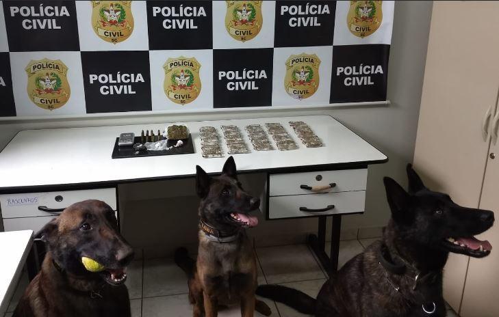Polícia Civil deflagra operação contra tráfico de drogas e prende 5 suspeitos no Oeste de SC