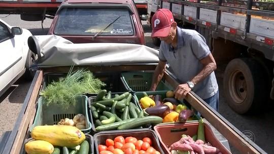 Programas recolhem alimentos para famílias carentes em Bauru