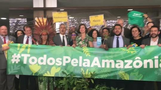 ONGs fazem protesto na Câmara contra decreto de extinção da Renca