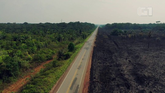 Terras indígenas concentram 7% das queimadas e 23% da Amazônia; entenda como elas protegem a floresta