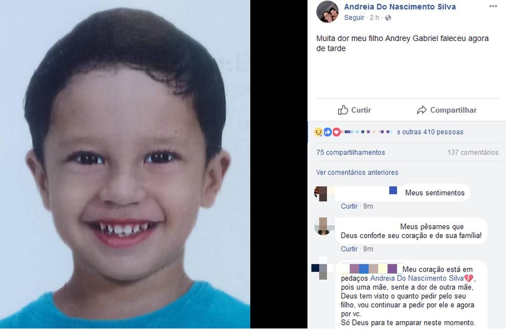Mãe de menino que se afogou em clube publicou mensagem informando sobre morte (Foto: Reprodução/Facebook)