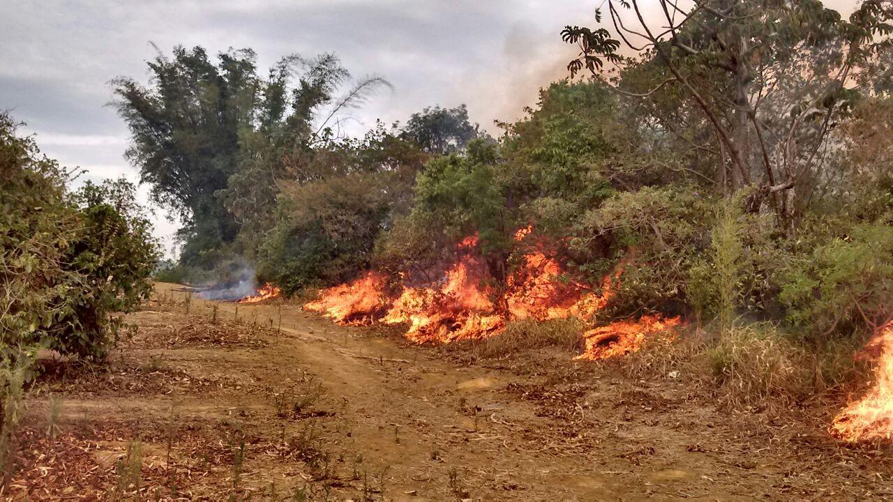 Bombeiros de Patos de Minas combatem incêndio em áreas na região do Pântano