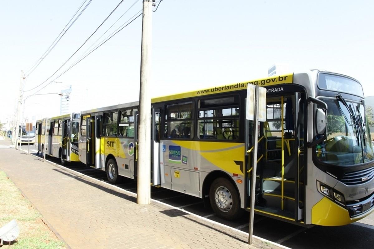 Justiça determina intervenção da Prefeitura de Uberlândia no serviço de  transporte coletivo para evitar paralisação | Triângulo Mineiro