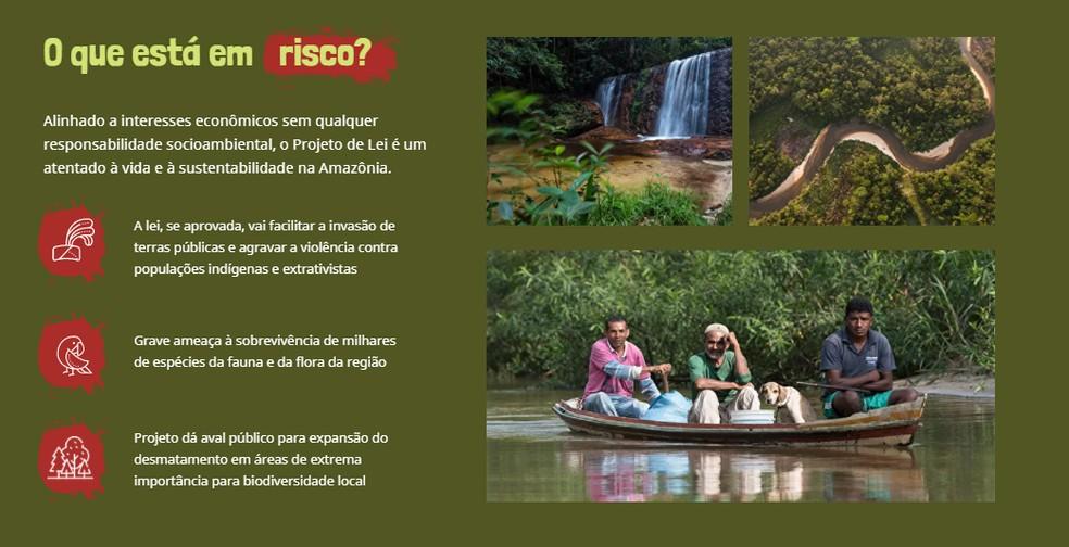 PL ameaça fauna e flora do Parque Nacional da Serra do Divisor, defendem entidades  — Foto: Reprodução