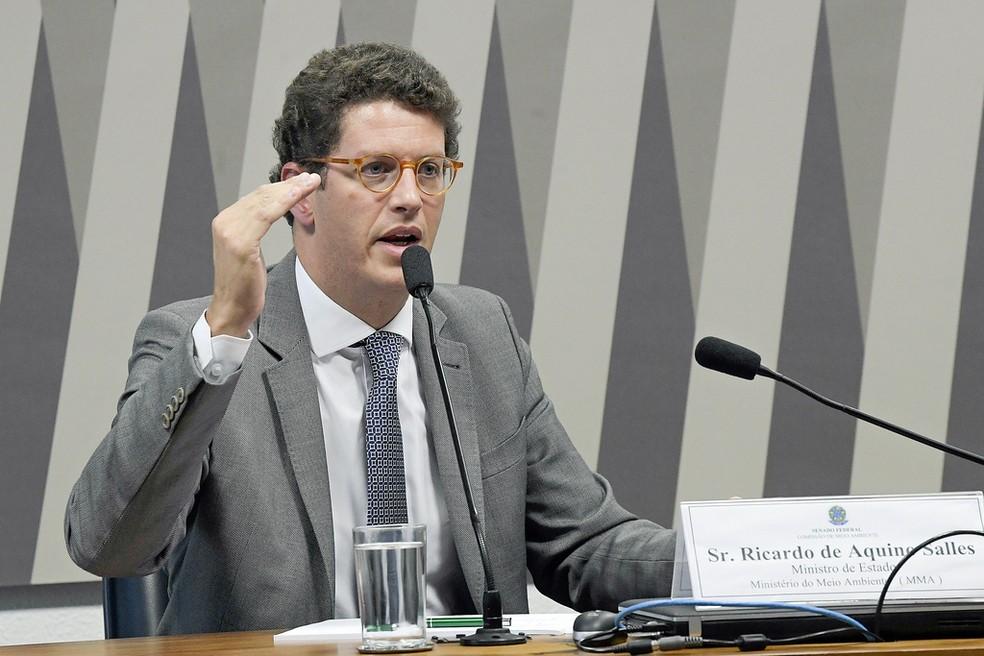 O ministro do Meio Ambiente, Ricardo Salles, durante audiência no Senado em março â?? Foto: Roque de Sá/Agência Senado
