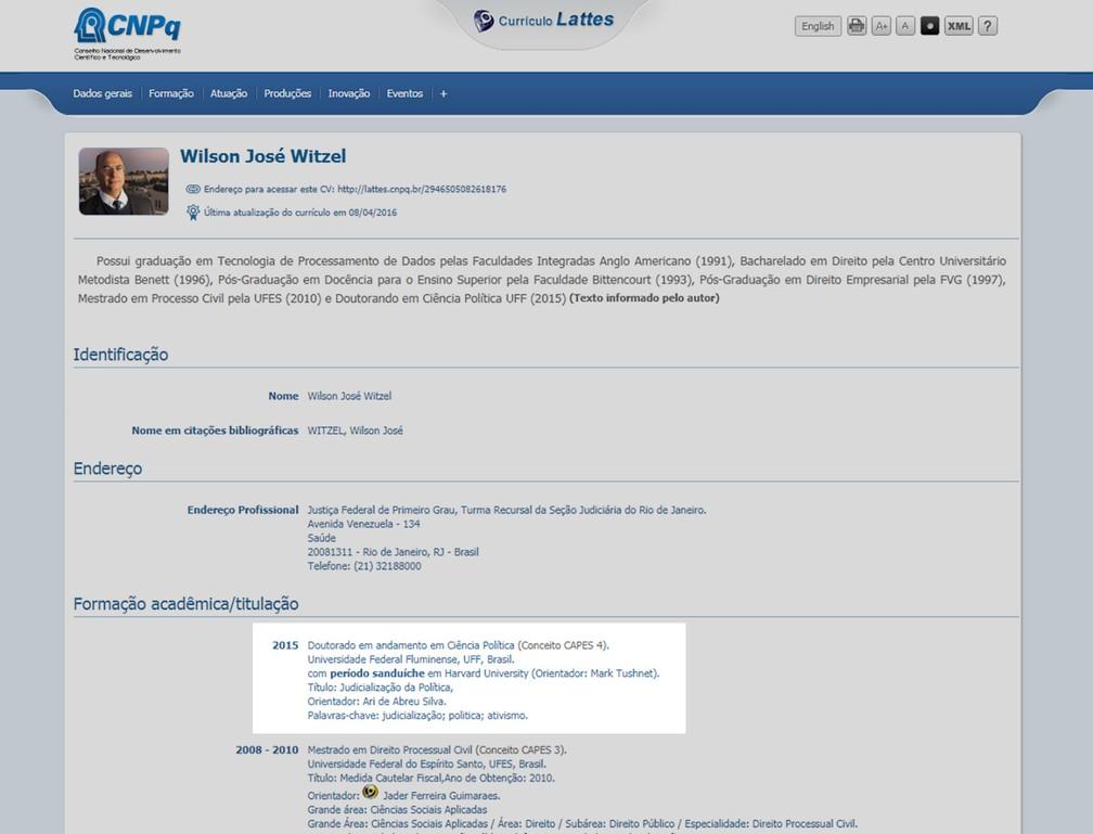O currículo Lattes de Witzel — Foto: Reprodução internet
