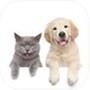 Pet translator - Cat&Dog