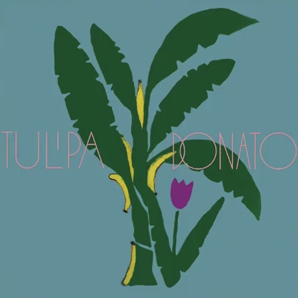 Capa do disco 'Tulipa Donato' — Foto: Arte de Teresa Bettinardi