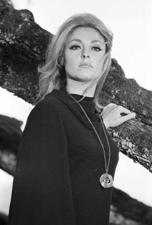 Sharon Tate em O Olho do Diabo (1966) (Foto: Divulgação)