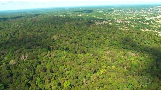 Governo quer usar Fundo Amazônia para indenizar donos de terras