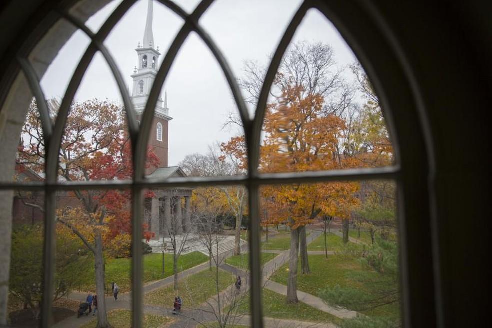 Todo ano, estudantes de medicina da USP passam uma temporada de estudos em Harvard — Foto: Divulgação/Universidade Harvard