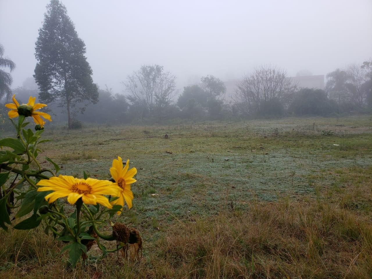 Inverno começa com frio menos intenso e chuva fica abaixo da média no RS