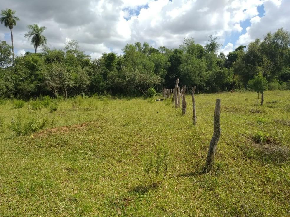Local onde a vítima de feminicídio foi encontrada em MS, segundo a polícia — Foto: Polícia Civil/Divulgação