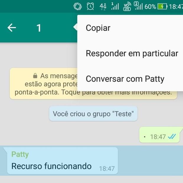 Whatsapp lança recurso para enviar mensagem particular em grupo (Foto: Reprodução)