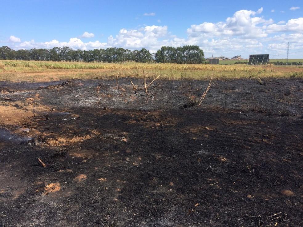 Incêndios foram controlados, mas deixaram rastros de destruição (Foto: Márcio Falcão/ TVCA)