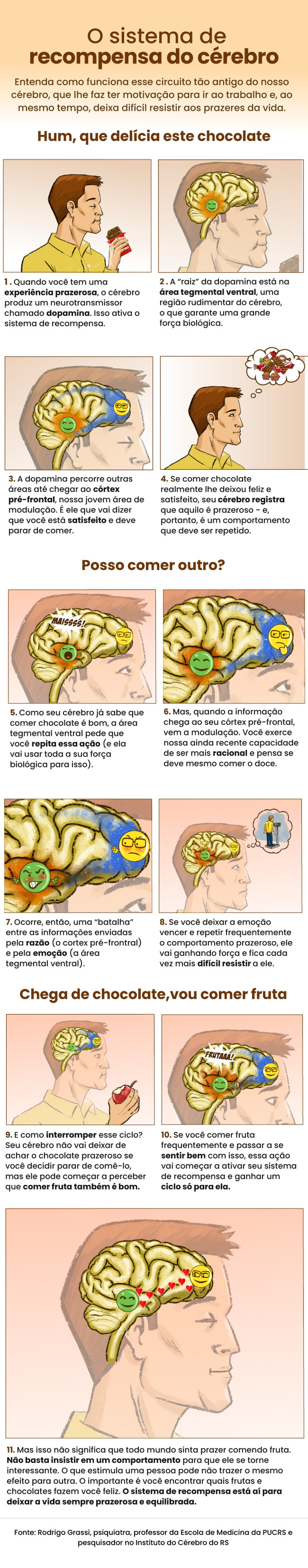 Infográfico mostra sistema de recompensa do cérebro — Foto: G1