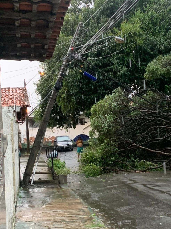Queda de árvore causou interdição de rua do bairro Cohab Anil, em São Luís. — Foto: Reprodução/Redes Sociais