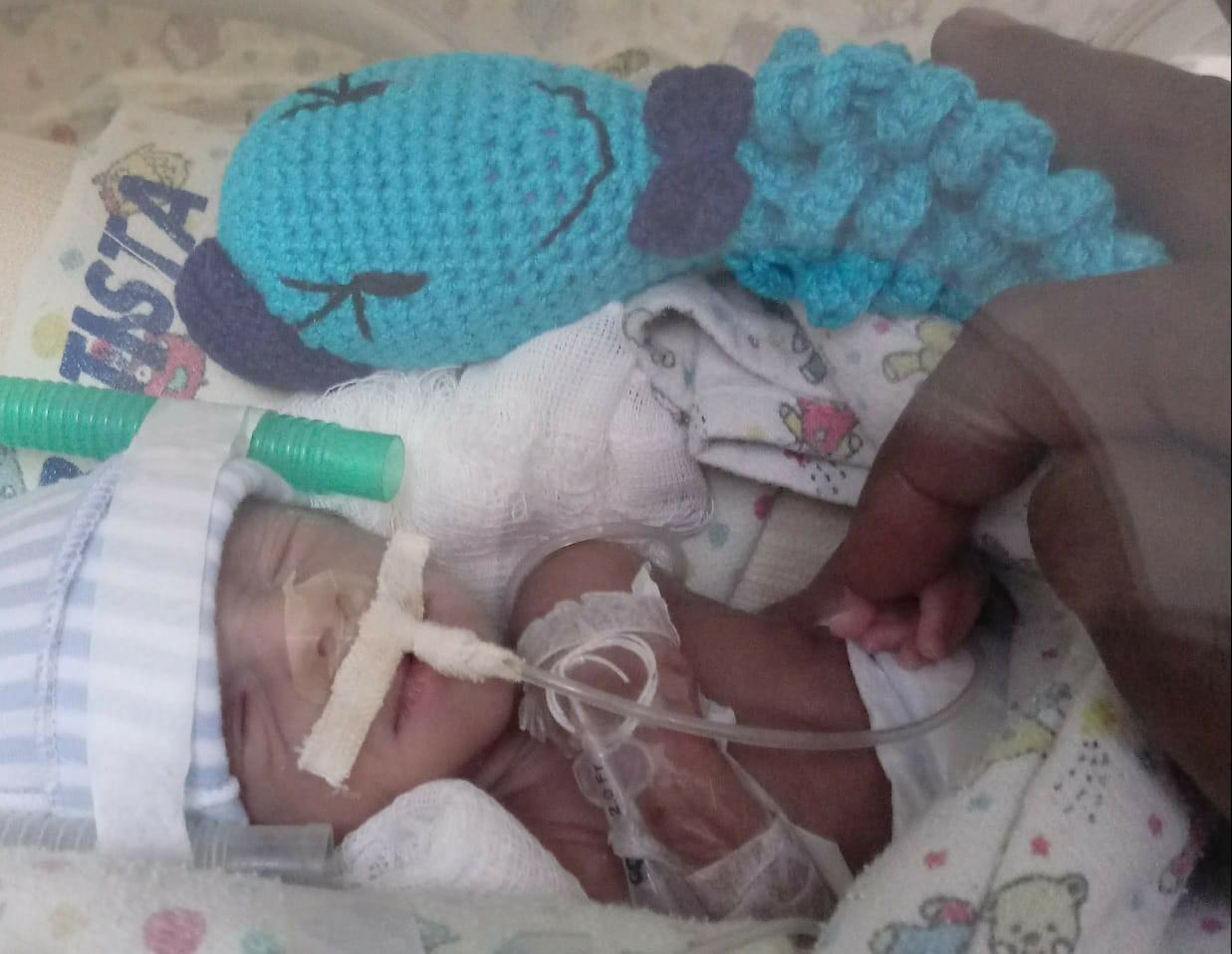 Polvo de crochê acompanha bebês prematuros no processo de recuperação: 'Um amiguinho na incubadora' - Notícias - Plantão Diário