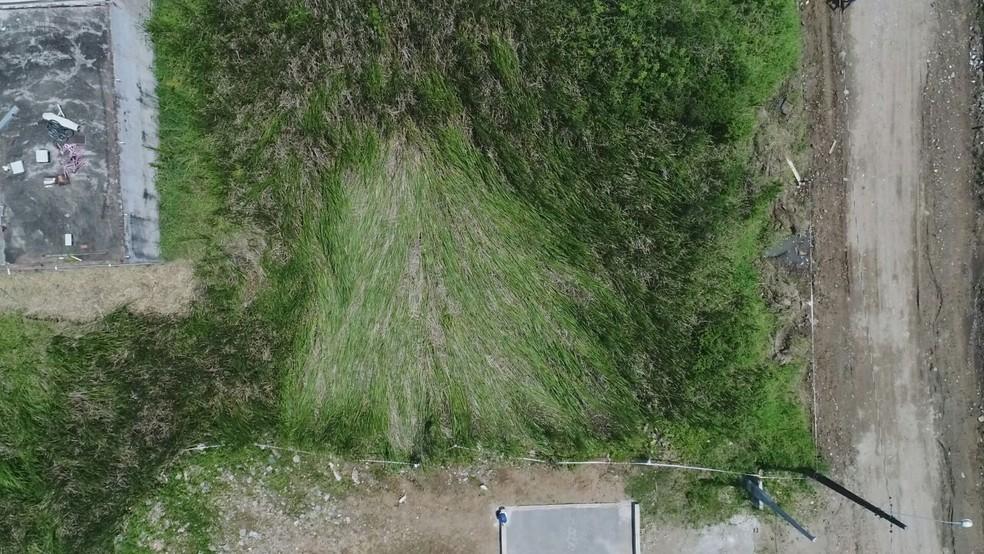Área de suposto pouso foi cercada para investigação em Peruíbe, SP (Foto: Edilson Almeida/Prefeitura de Peruíbe)