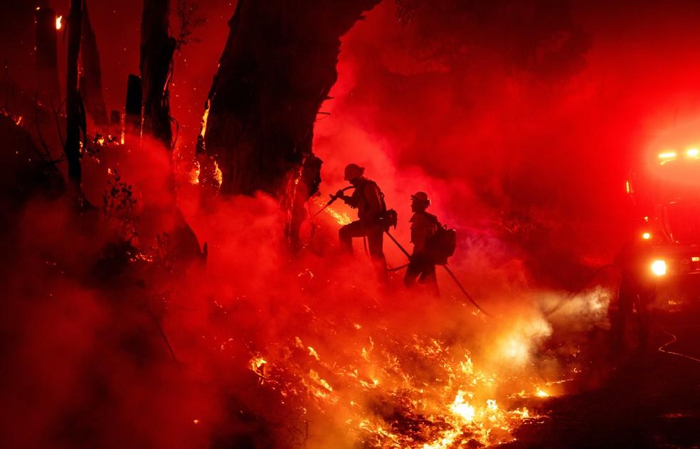 1º de novembro - Bombeiros trabalham para controlar as chamas do incêndio conhecido localmente como Maria em Santa Paula, na Califórnia, EUA.  — Foto: Josh Edelson/AFP