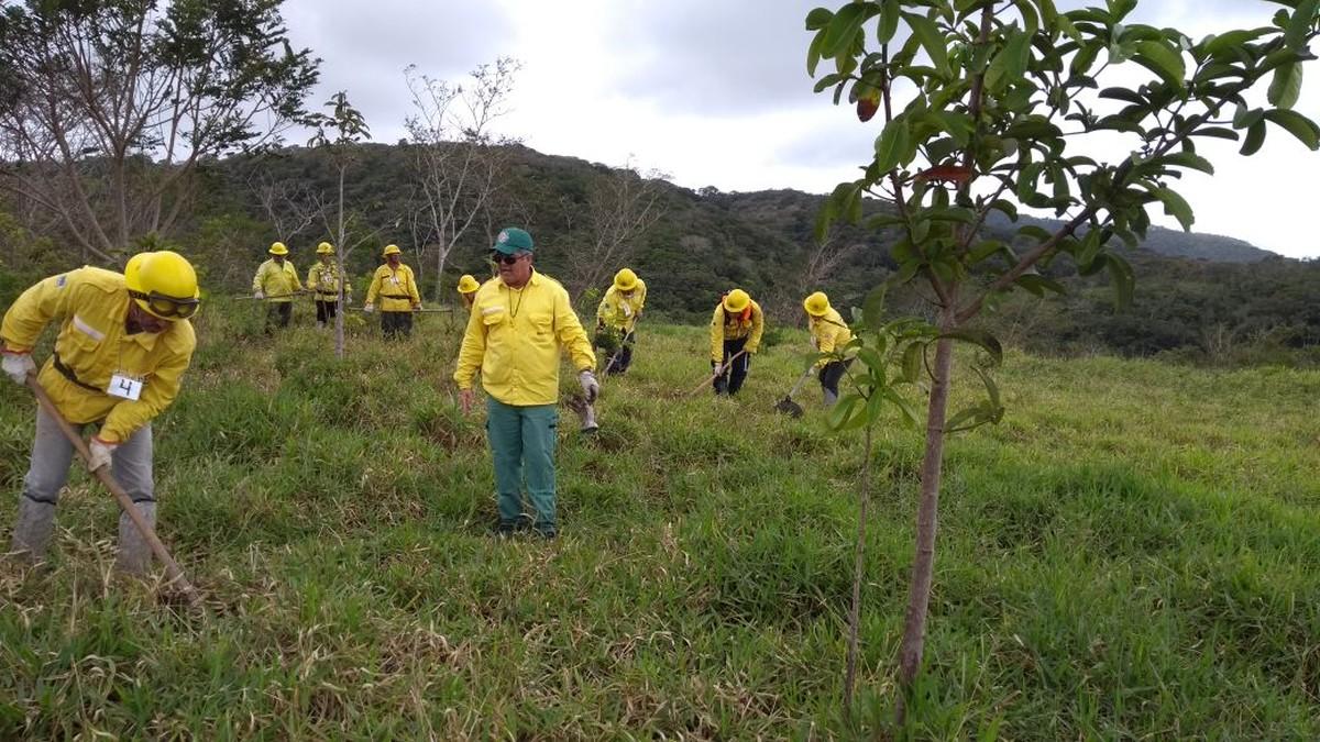 Ação ambiental vai recolher lixo na Serra dos Cavalos