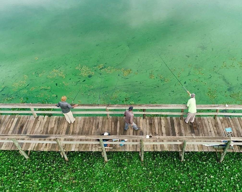 Poluição seria a causa da mudança da cor nas águas do Tietê em Arealva — Foto: Willian Silva / TV TEM