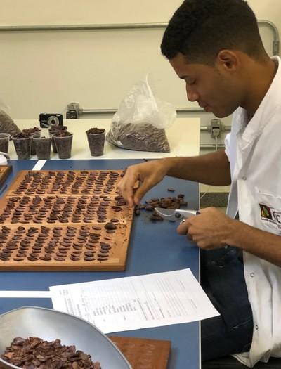 analise-amendoas-cacau (Foto: Eliane Silva/Ed.Globo)