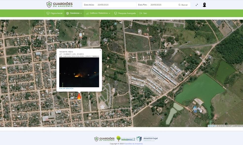 Aplicativo Guardiões da Amazônia — Foto: Prefeitura de Ji-Paraná/Divulgação