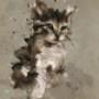 Papel de Parede: Gato