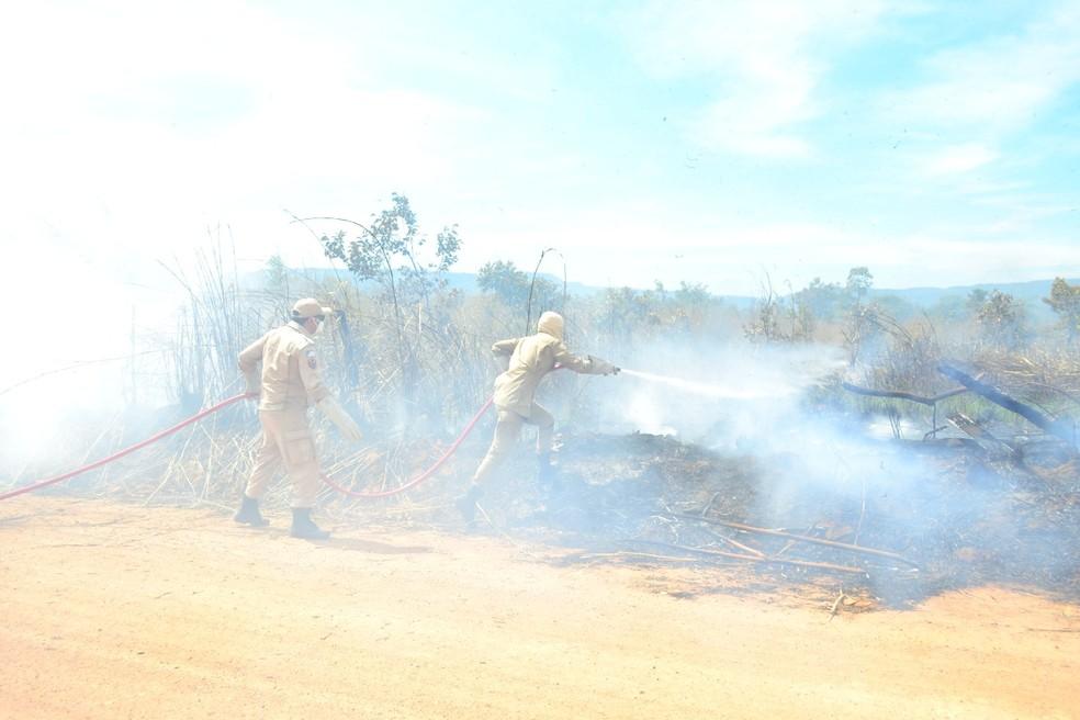 Bombeiros combateram incêndio florestal na região sul de Palmas — Foto: Bombeiros/Divulgação