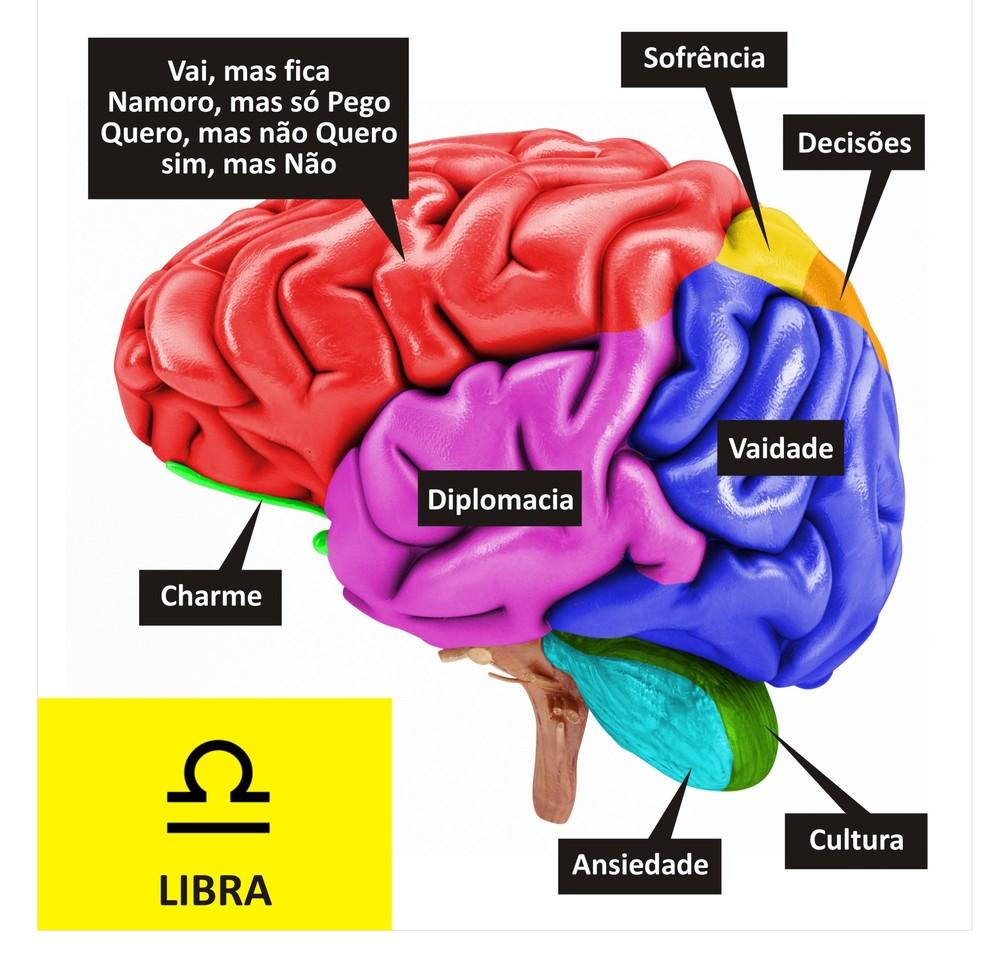 Cérebro de Libra (Foto: TV Globo )