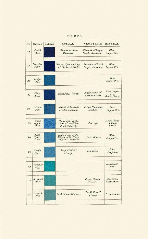 """Uma página do livro """"Nomenclatura das Cores de Werner"""" (Foto: SMITHSONIAN BOOKS)"""