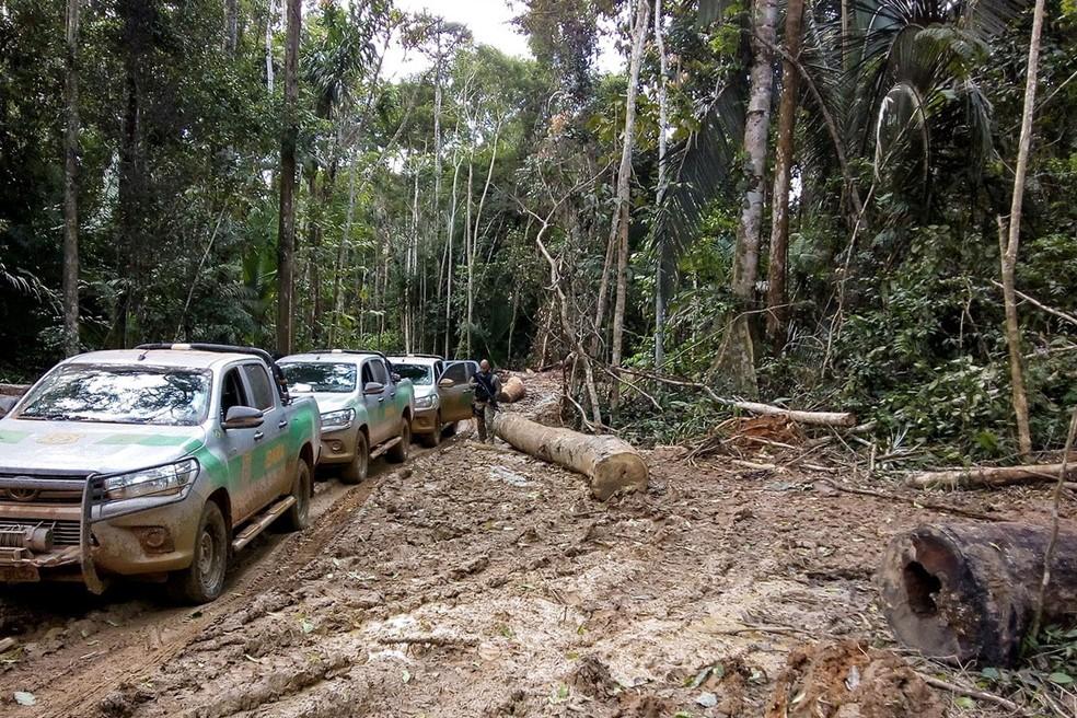 Máquinas e acampamentos desativados em Terras Indígenas em Mato Grosso (Foto: Ibama)