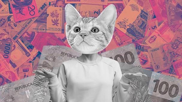 Guia de finanças: o que você precisa fazer para terminar 2019 no azul (Foto: Montagem: Iago Francisco / Fotos: Thinkstock)