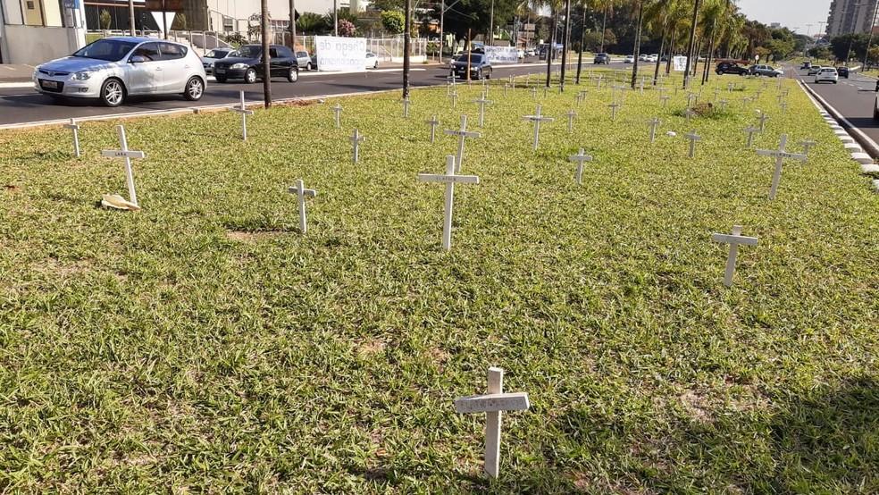 Mais de 120 cruzes foram colocadas na avenida em Bauru — Foto: Fernando Savioli / TV TEM