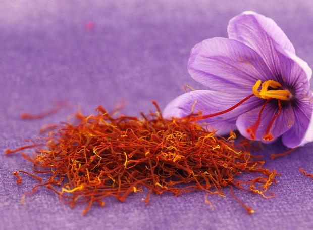 Açafrão: conheça sua origem, saiba os benefícios e aprenda receitas com a especiaria - Casa e Jardim | Ingredientes